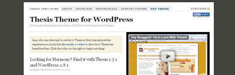 Why Is Thesis Such A Great Premium WordPress Theme?